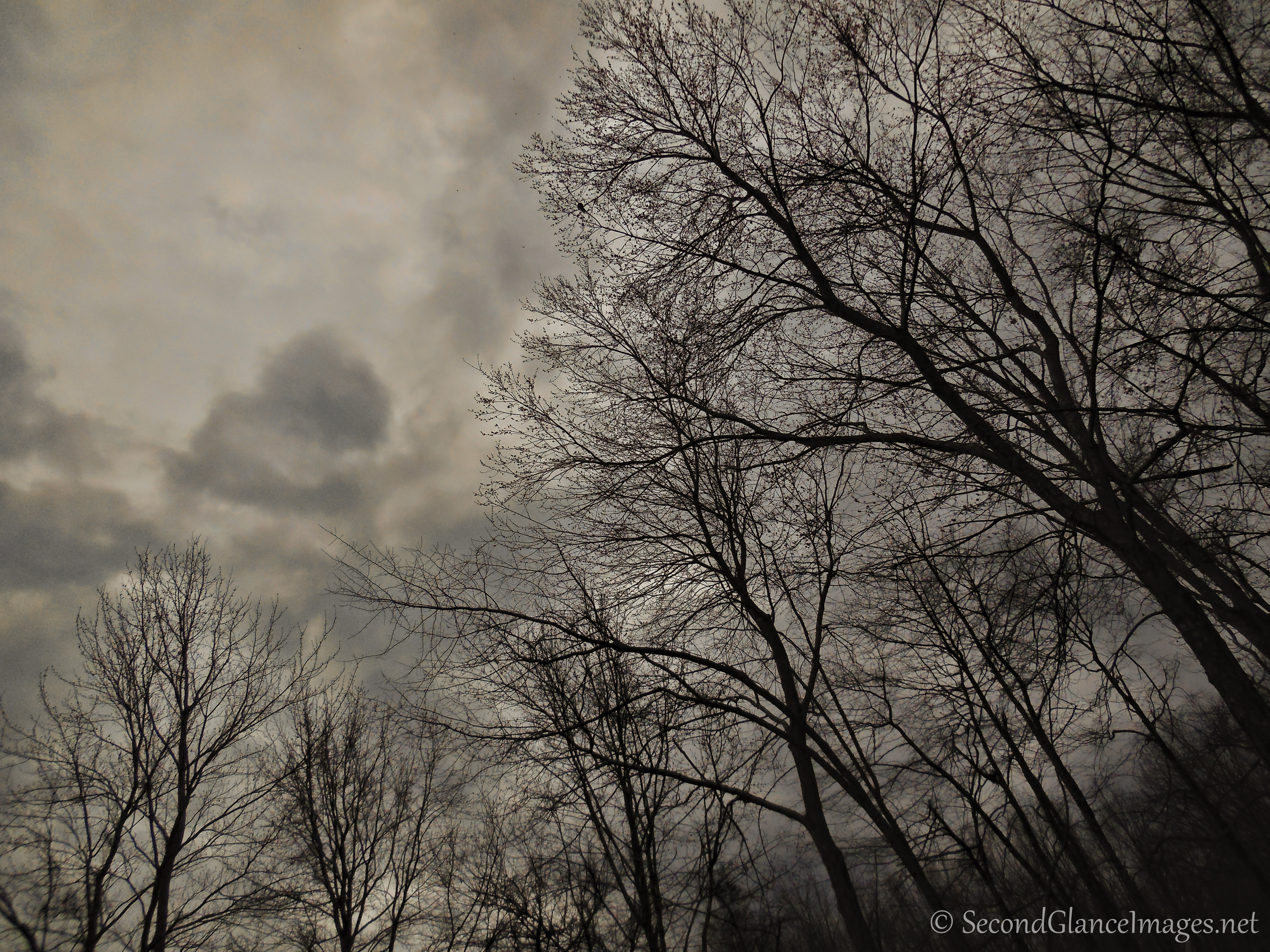 Gathering storm clouds ...