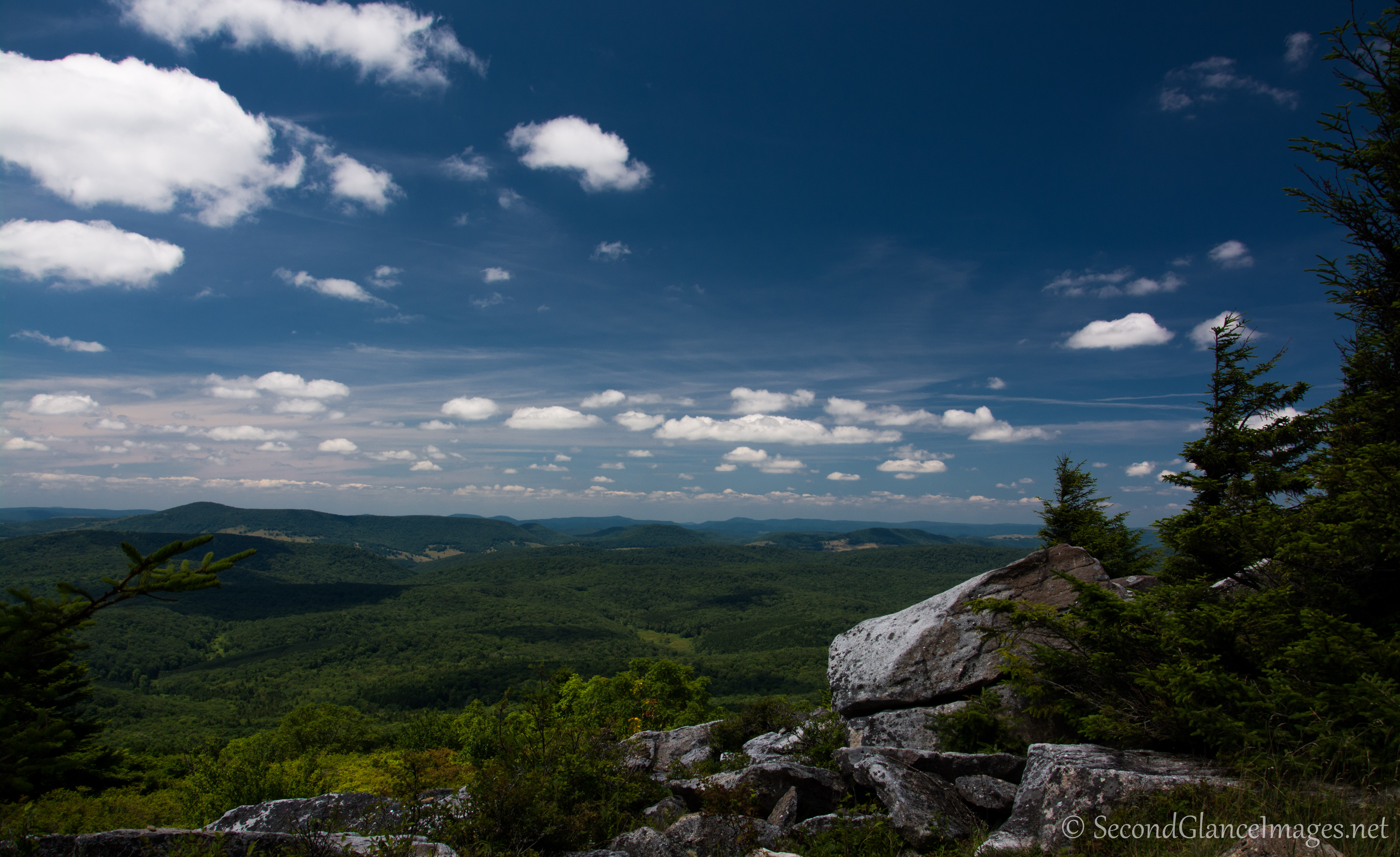 Views from the Whispering Spruce Trail ...